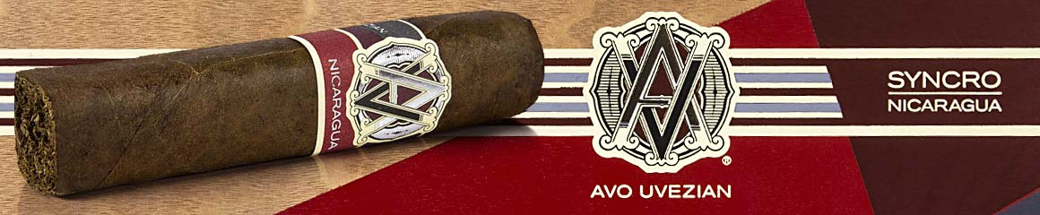 AVO Syncro Nicaragua