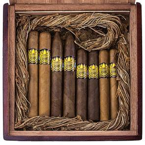 Ambrosia Spice God 8-Cigar Sampler-www.cigarplace.biz-20